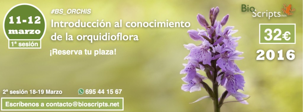 orquideas_11-12marzo_SLIDER_Prod (1)