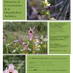 Orquidioflora Andaluza