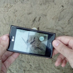 Asistente para la identificación de huellas (app)