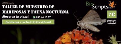 portadas_mariposas_generico