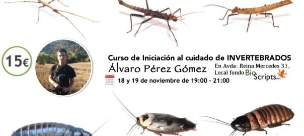 facebook_invertebrados4-1024x614
