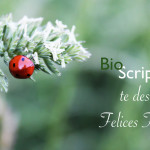 BioScripts os desea felices fiestas