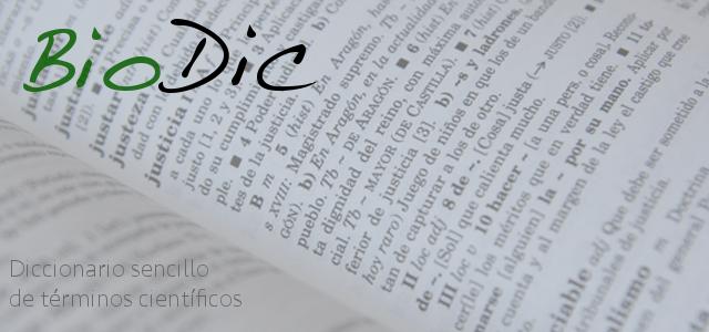 proyectos_biodic