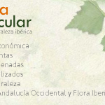Liberamos la app Flora Vascular móvil