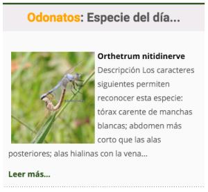 especie_odonatos