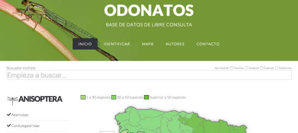 odonatos_blog