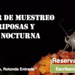 Muestreos de mariposas y fauna nocturna