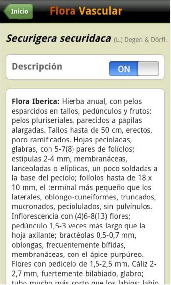 Ficha de especie en la app Flora Vascular