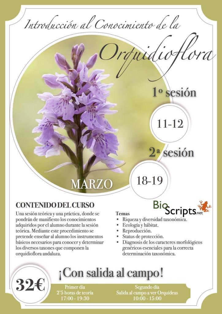 curso_orquideas (1)
