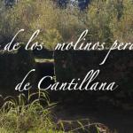 Ruta de los Molinos Perdidos de Cantillana.