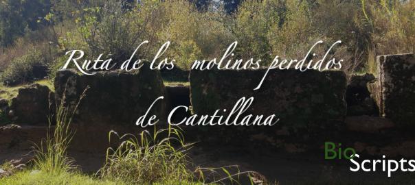 molinos_perdidos_cantillana