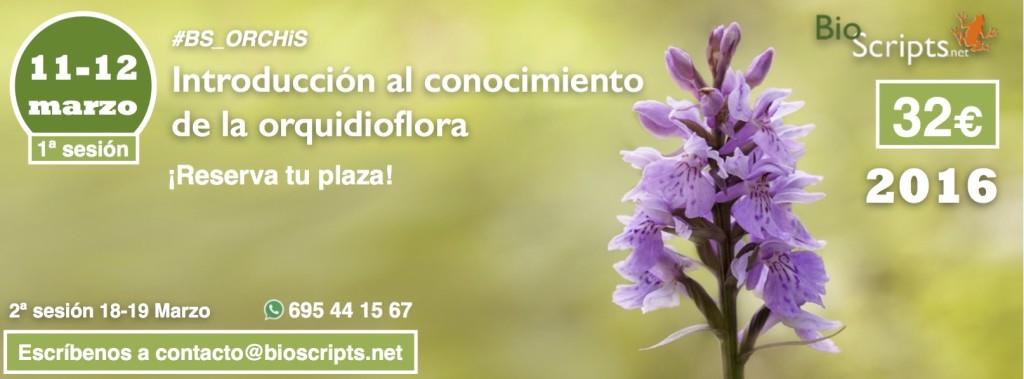 Curso de Introducción al conocimiento de la Orquidioflora