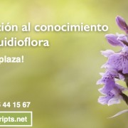 orquideas_11-12marzo_SLIDER_Prod