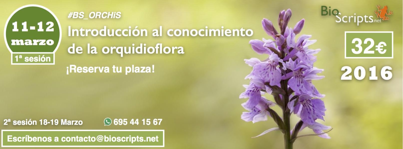Taller de Introducción a l conocimiento de la orquidioflora