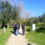 Resumen del curso de Introducción a la Orquidioflora
