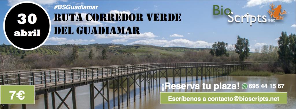 Ruta Corredor Verde Guadiamar