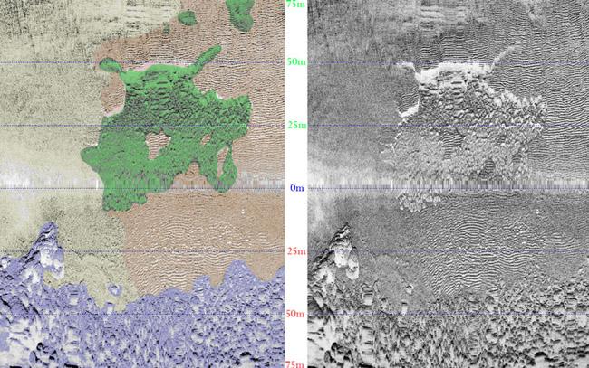 cartografia de fanerogamas con sonar ESGEMAR