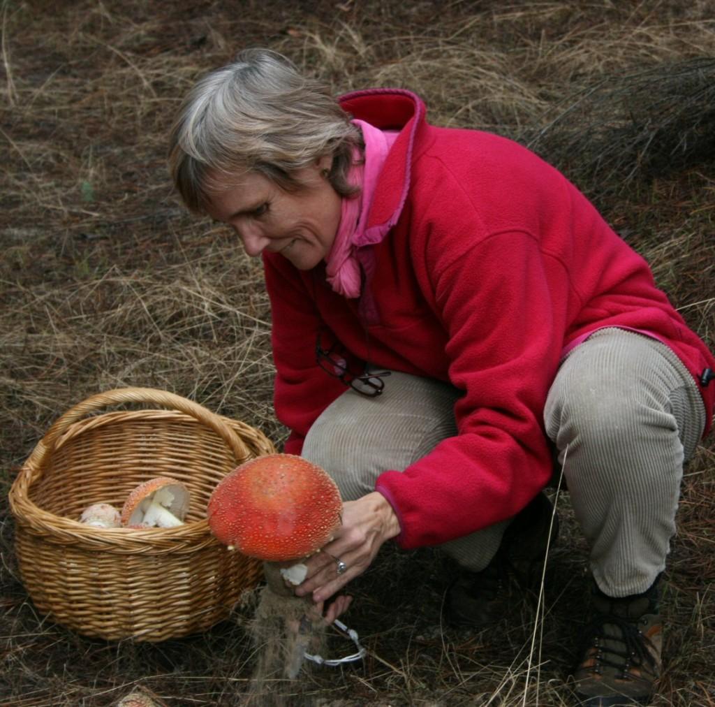 Patricia siljestrom cogiendo una Muscaria