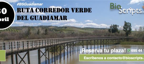 cabeceras_guadiamar_PRODUCTO-1600x593