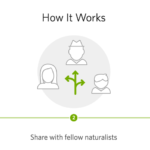 ¿Conoces iNaturalist?