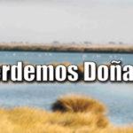 ¿Qué está ocurriendo en el Parque Natural de Doñana?