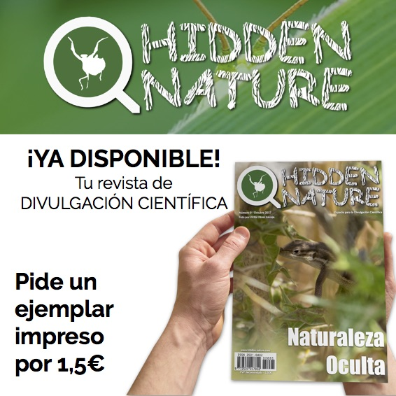 Nº 0 revista Hidden Nature
